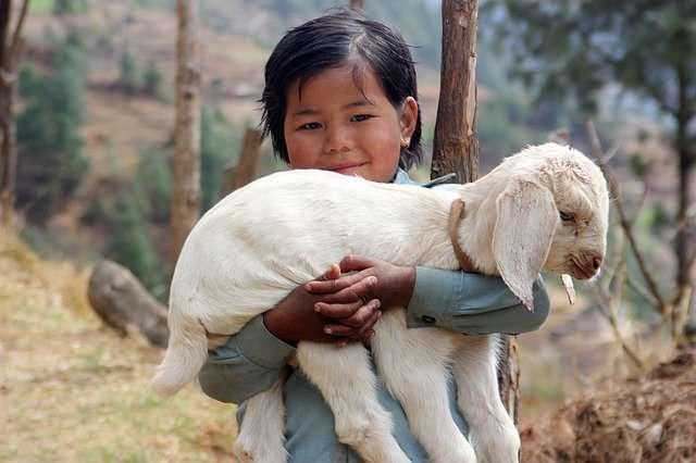 ויזה להודו מנפאל